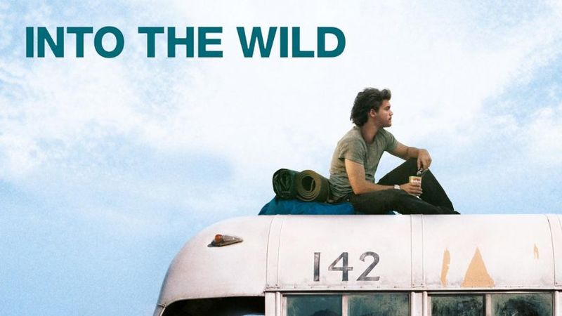 Into the wild Nelle terre selvagge
