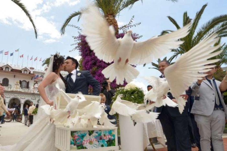 Il Boss delle cerimonie, su Real time i matrimoni napoletani
