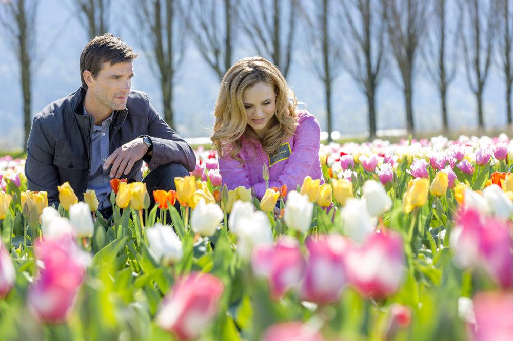 I Tulipani dell'amore Rai 2