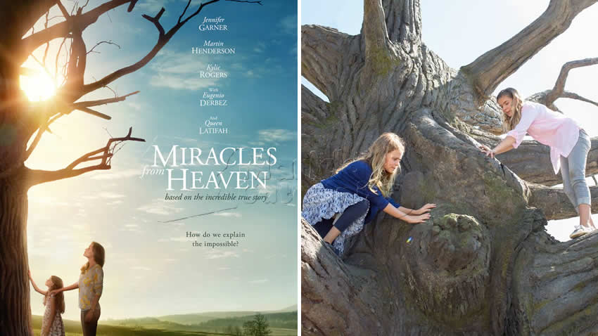 Miracoli dal Cielo Rai 1