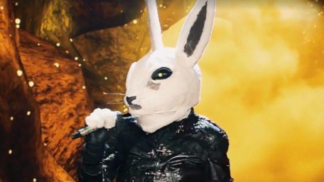 Il cantante mascherato finalissima Il Coniglio