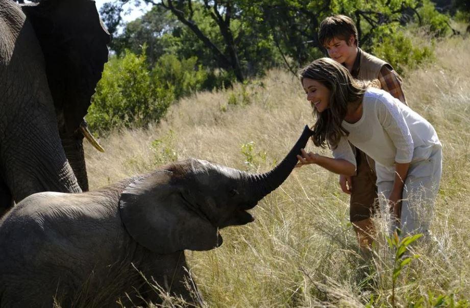 Il ragazzo e il grande elefante wikipedia