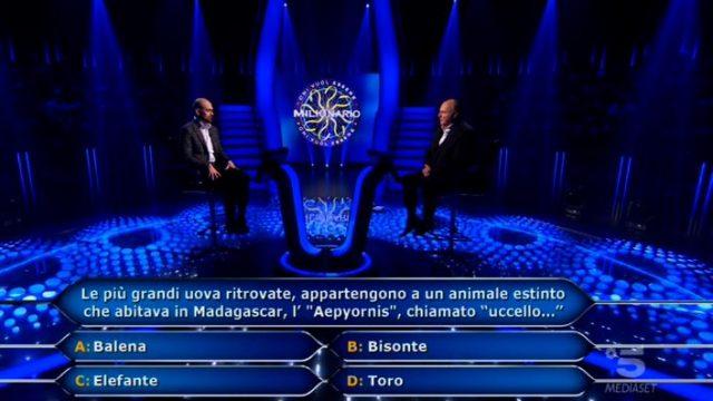 Stefano Caligione alla dodicesima domanda