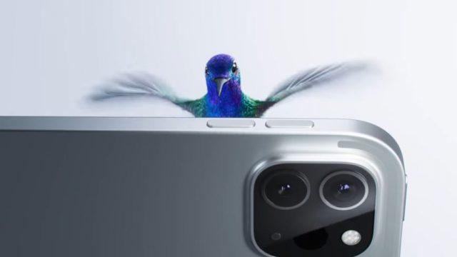 Spot in TV Apple iPad Pro - Il colibrì danza con il nuovo iPad e la Magic Keyboard