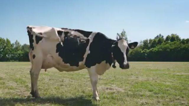 Spot in TV yogurt Yomo con le voci della Gialappa's Band