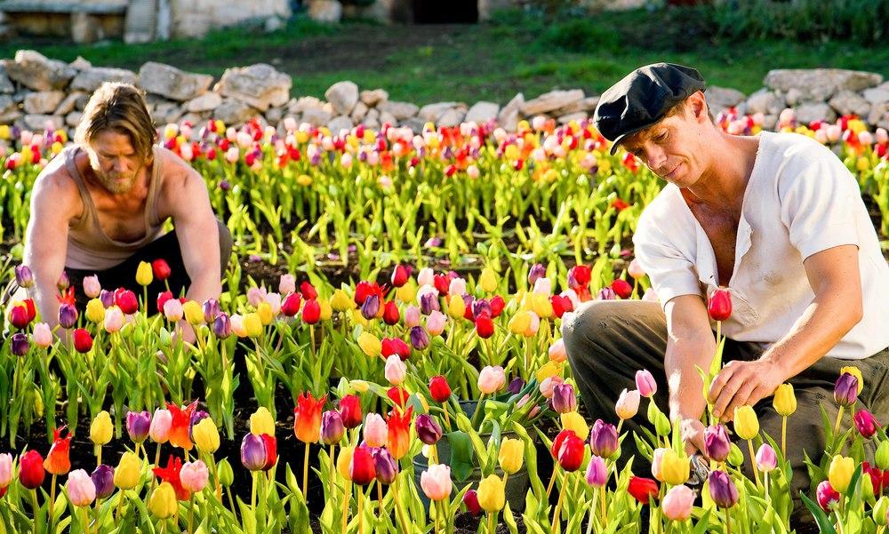 Tulipani Amore onore e una bicicletta attori