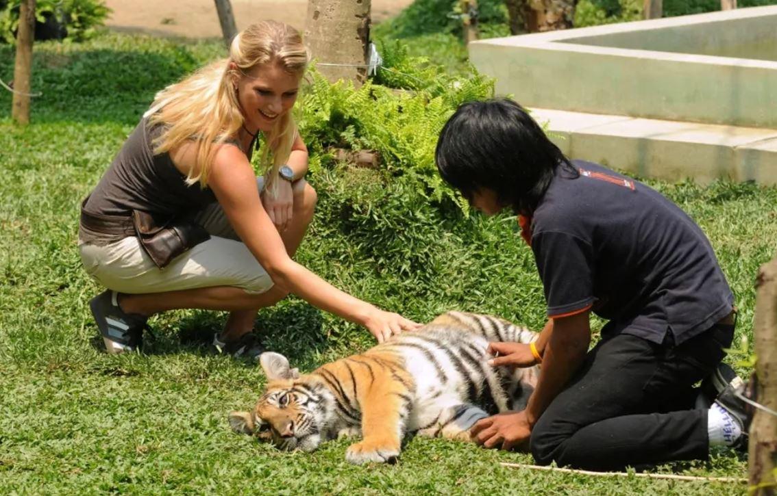 Dream Hotel Chiang Mai film finale