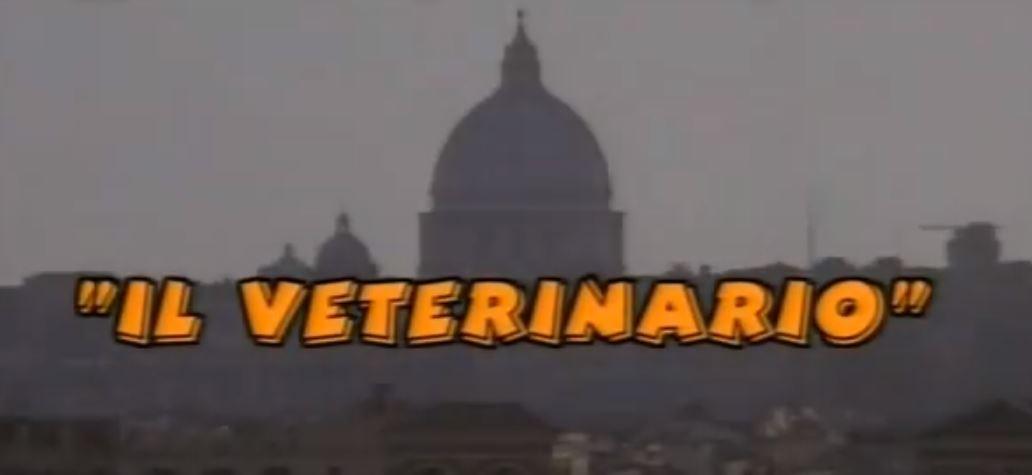 Il veterinario film Rai Premium