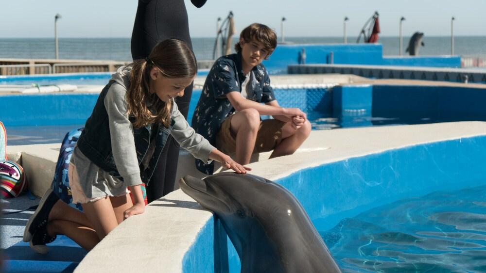 Bernie il delfino film finale