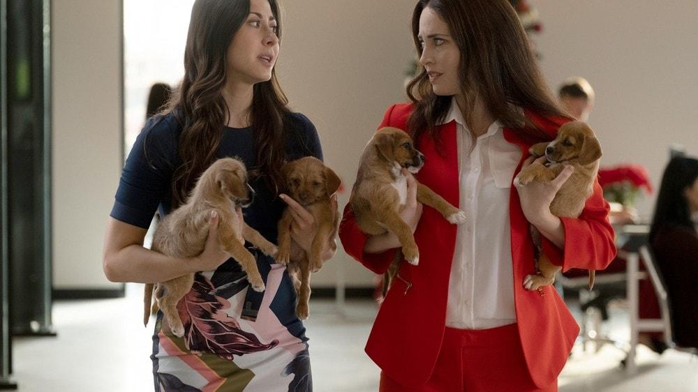 Il Natale dei cuccioli film attori