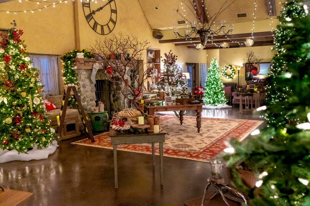 Il Natale di Joy film dove è girato