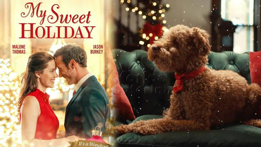 Un Natale di cioccolato film Tv8
