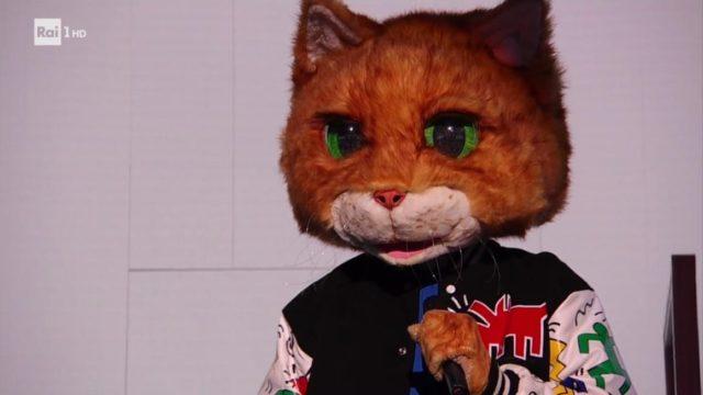 il cantante gatto