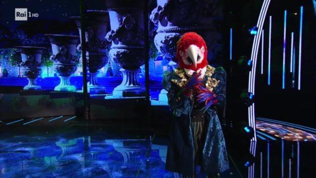 il cantante mascherato pappagallo vincitore percorso