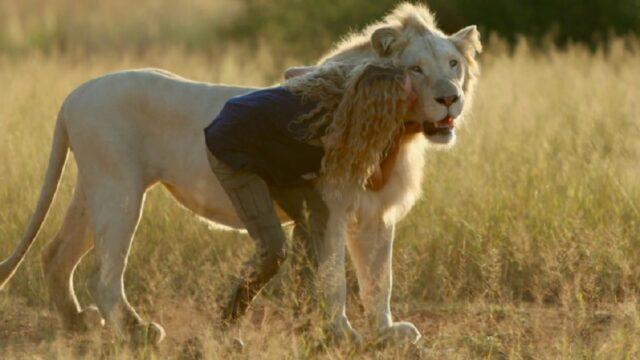 Mia e il leone bianco finale