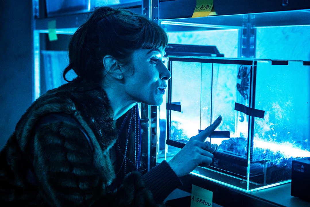 Morgane Phyllobates Terribilis dove è girato