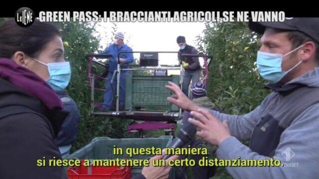 Le Iene Show 19 ottobre green pass agricoltura