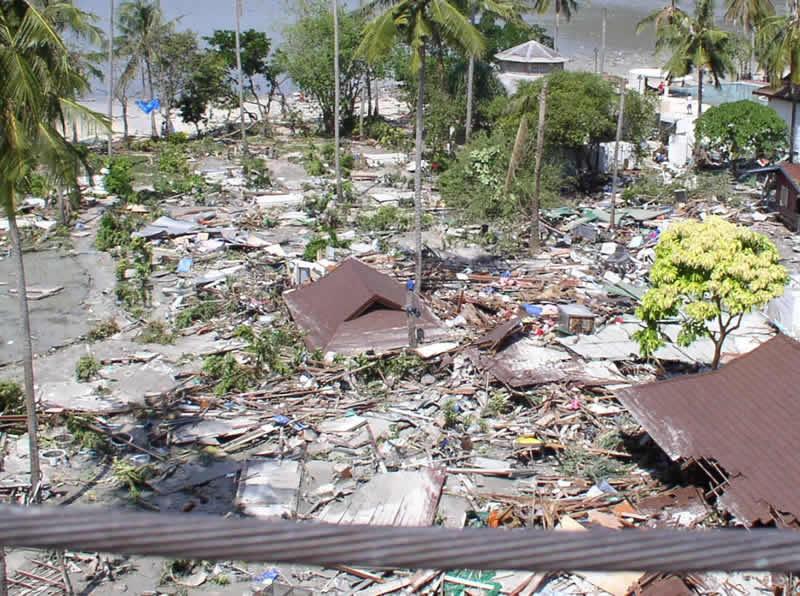 Ossi di seppia Tsunami